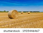 Round Bales Of Straw Rolled Up...