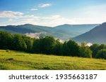 Mountain Meadow In Morning...