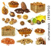 Nuts Collection Isolated On A...