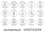 eco cosmetics icon. organic... | Shutterstock . vector #1935725194
