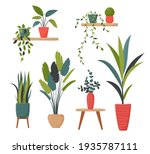 set of isolated home plants in...   Shutterstock .eps vector #1935787111