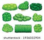 different bushes as perennial...   Shutterstock .eps vector #1936032904