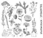 vector set of hand drawn... | Shutterstock .eps vector #193609781