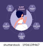 sleep cycle. healthy biology ... | Shutterstock .eps vector #1936139467