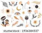 hand drawn doodle magic plants... | Shutterstock .eps vector #1936384537