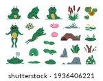 Frog. Cartoon Amphibian With...