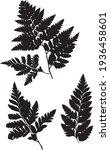 fern leaf prints  vector image... | Shutterstock .eps vector #1936458601