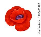 red poppy flower icon. vector...   Shutterstock .eps vector #1936479487