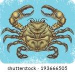 Hand Drawn Blue Crab.