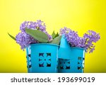 beautiful lilac flowers on a... | Shutterstock . vector #193699019