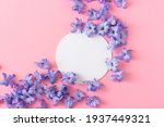 hyacinth flowers on a pink...   Shutterstock . vector #1937449321