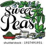garden fresh tasty peas with... | Shutterstock .eps vector #1937491951