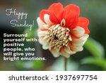 Happy Sunday. Surround Yourself ...