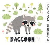 cute funny raccoon in forest ... | Shutterstock .eps vector #1937807407
