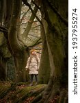 Little Girl In Large Trees In...
