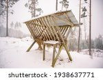 Deer Feeder On A Hill In The...