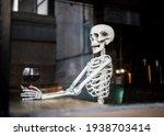 Human Skeleton Bones Sat In...