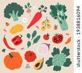 Vegetable Food Illustration ...