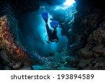 Постер, плакат: A diver explores the