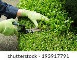 horizontal photo of hands ... | Shutterstock . vector #193917791