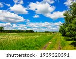 View Over A Field On A...