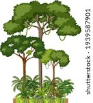 set of different rainforest... | Shutterstock .eps vector #1939587901