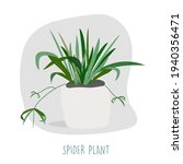 spider plant illustration.... | Shutterstock .eps vector #1940356471
