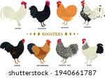 roosters domestic chickens flat ...   Shutterstock .eps vector #1940661787