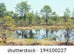 landscape with marsh | Shutterstock . vector #194100227