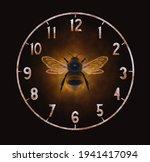 Bumblebee On Black Background....
