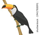 Vector Illustration Of A Toucan ...