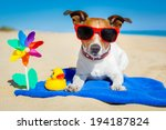 dog plays with sunglasses at... | Shutterstock . vector #194187824