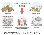 biodiversity loss issues or... | Shutterstock .eps vector #1941931717