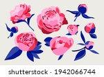 set of various decorative...   Shutterstock .eps vector #1942066744