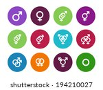gender identities circle icons...