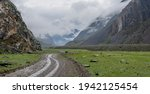 Road In The Altay Mountains....