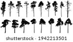pine trees silhouette isolated  ... | Shutterstock .eps vector #1942213501