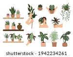 house plants vector... | Shutterstock .eps vector #1942234261