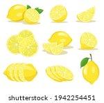 Lemon Slices Vector...