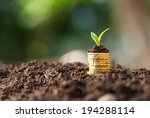 golden coins in soil with young ... | Shutterstock . vector #194288114