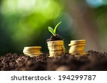 golden coins in soil with young ... | Shutterstock . vector #194299787