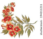 watercolor flowers in a... | Shutterstock . vector #194311211