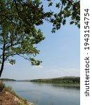 Landscape  Oak Branches Over...