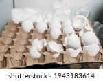 Empty Eggshells In An Egg...