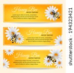 Honey bee on daisy flower with comb pattern banners set isolated vector illustration