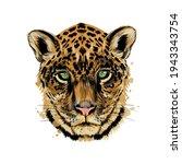 jaguar  leopard head portrait... | Shutterstock .eps vector #1943343754
