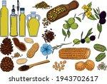 oil set. hand drawn vector... | Shutterstock .eps vector #1943702617