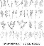 vector  isolated  hand drawn... | Shutterstock .eps vector #1943758537