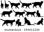 Stock vector set of cats isolated on white 194411234