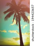 Retro Styled Lone Palm Tree In...